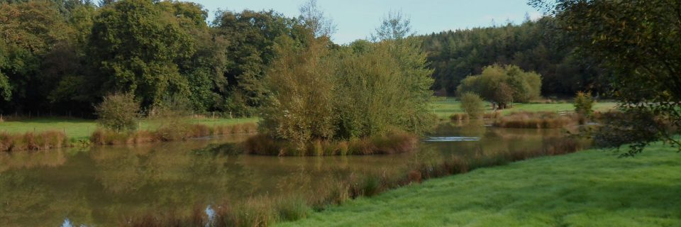 Exclusive access to our onsite fishing lakes